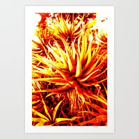 cacti Art Prints featuring CACTI by Charles Harry Mackenzie