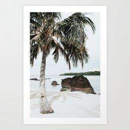 Tropical Beach Art Print | Exotic Travel Photography | White Beach With Palm Tree Art Print