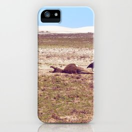 Vultures on Donkey iPhone Case