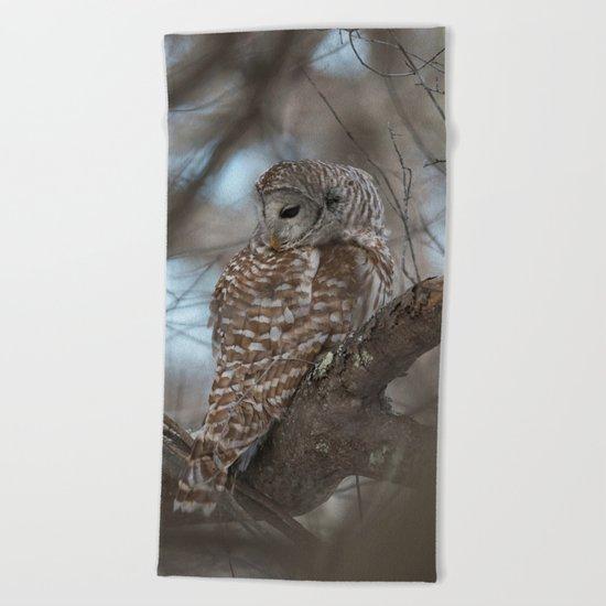 Sleepy Owl Beach Towel