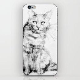 ちょっとしぶい猫 iPhone Skin