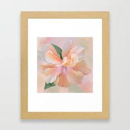 PEACH HIBISCUS-II Framed Art Print