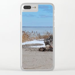 Maumee Bay in Winter III Clear iPhone Case