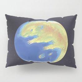 World Rat Day Pillow Sham