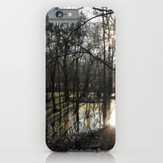 shadows & reflections iPhone 6s Slim Case