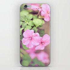 Soft Pinkness iPhone & iPod Skin