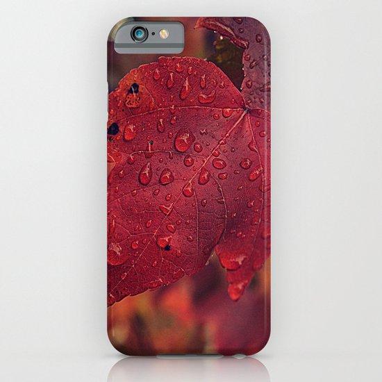 Fall Drops II  iPhone & iPod Case