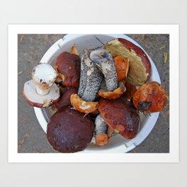 raw mushrooms Art Print