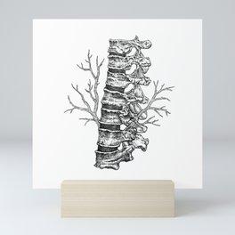 Vertebral column Mini Art Print