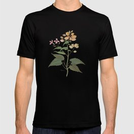Honesty - botanical T-shirt