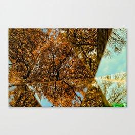 Reflected Tree Canvas Print