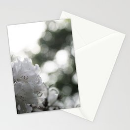 RAYS OF LIGHT Stationery Cards
