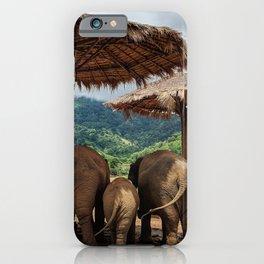 I like big butts iPhone Case