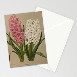 Arendsen, Arentine H. (1836-1915) - Haarlem's Flora 1872 - Hyacinths 2 Stationery Cards