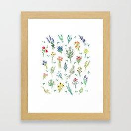 Garden Bouquets Framed Art Print