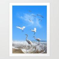 White Egrets in a Morning Art Print