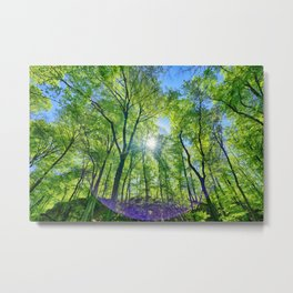 Perfect lens flare in a summer afternoon in the forest Metal Print