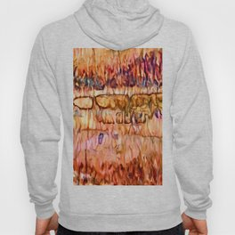 Earth Layers Abstract Hoody