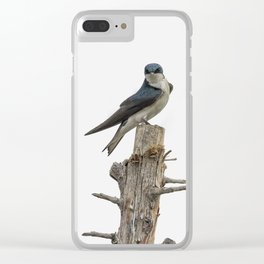 Tree Swallow with Flair Clear iPhone Case