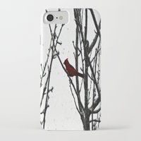 cardinal iPhone & iPod Cases featuring Cardinal by Emma Nettles