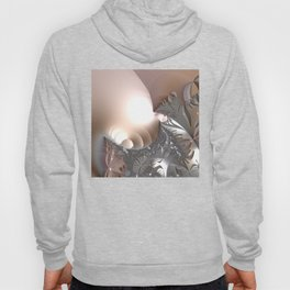 Muted misty colors of a fractal world at dusk light Hoody