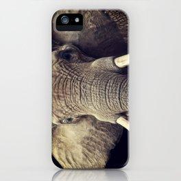 Elephant portrait iPhone Case