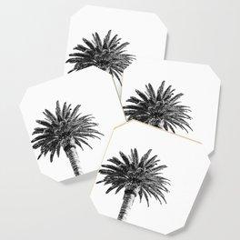 Lush Palm {2 of 2} / Black and White Sky Tree Leaves Art Print Coaster