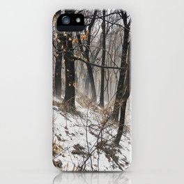 Winter at the park iPhone Case