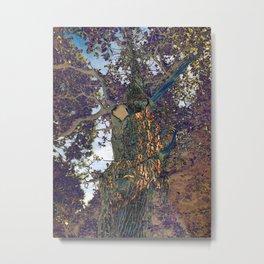 The Secret Lives of Trees VI Metal Print