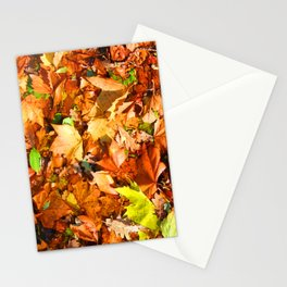Leaves & colours Stationery Cards
