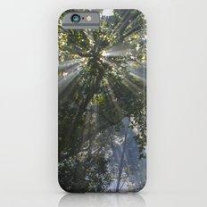 Into The Light Slim Case iPhone 6s