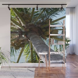 Coconut Palm Wall Mural