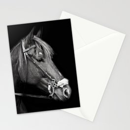 Gidget Stationery Cards