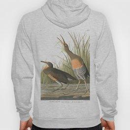 Salt water march hen, Birds of America, Audubon Plate 204 Hoody