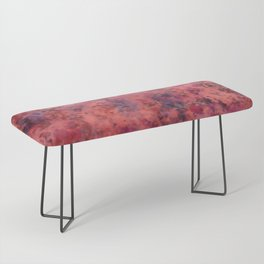 Coral Clouds Bench