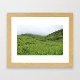 Alaskan Tundra Framed Art Print