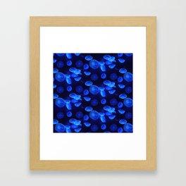 Bue Jellyfish Framed Art Print