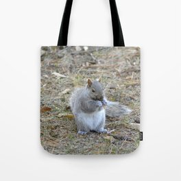 Gray Squirrel Munching on Pine Cones Tote Bag