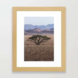 Goshawk Flying from a Camelthorn Tree Framed Art Print