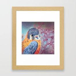 Bird Watching Framed Art Print