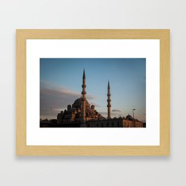 Turkey Framed Art Print