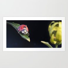 Ladybug Journey Art Print