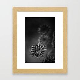 432 Hz Framed Art Print