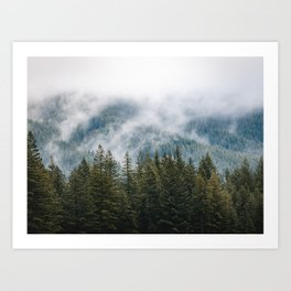 PNW Forest Adventure - Nature Photography Art Print