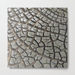 Texture #14 Drought Metal Print