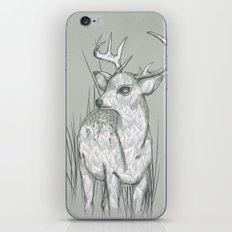 White-Tailed  iPhone & iPod Skin