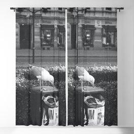 Seagull of Helsinki Blackout Curtain