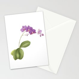 Flowering purple phalaenopsis orchid Stationery Cards