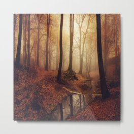 Forest Creek At Sunrise Metal Print