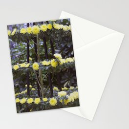 Longwood Gardens Autumn Series 206 Stationery Cards